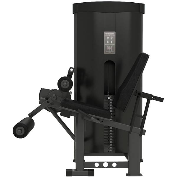 Flexo Extensora Titanium Fitness Essential
